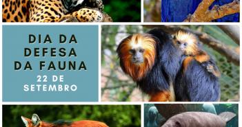 dia da defesa da fauna (1)